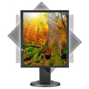 Монитор жидкокристаллический NEC Монитор LCD 19'' [5:4] 1280х1024(SXGA) IPS, nonGLARE, 250cd/m2, H178°/V178°, 1000:1, 16.7M Color, 6ms, VGA, DVI, DP, Height adj, Pivot, Tilt, HAS, Swivel, 3Y, Black
